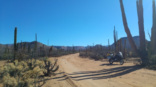 The Baja Roads!